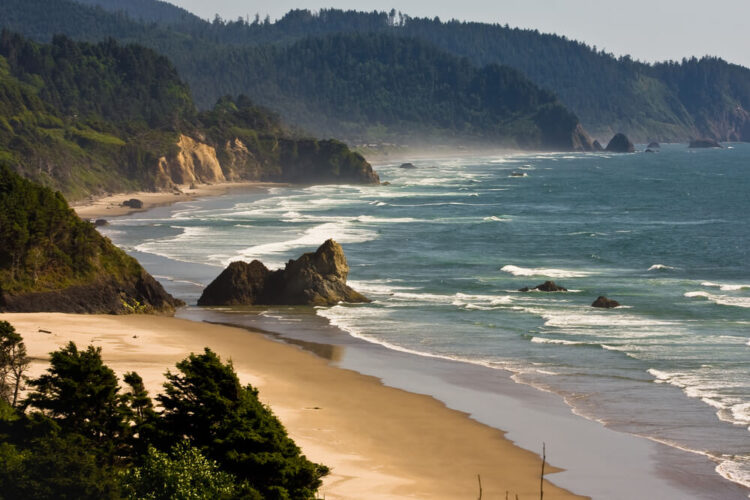 A sandy windswept beach landscape with sea stacks and rugged cliffs covered in trees, next to the Pacific Ocean.