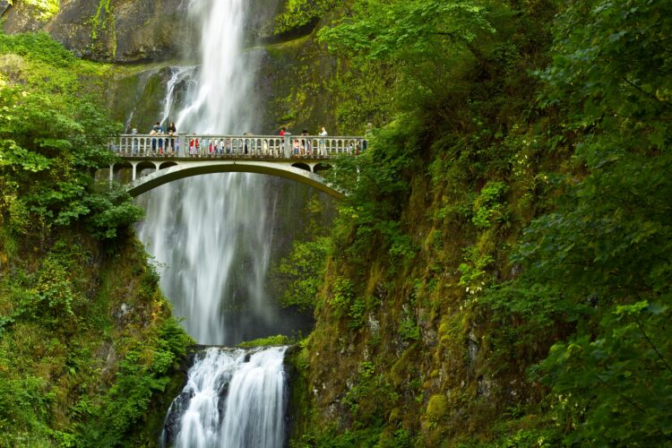 close up view of multnomah falls bridge with visitors admiring the falls