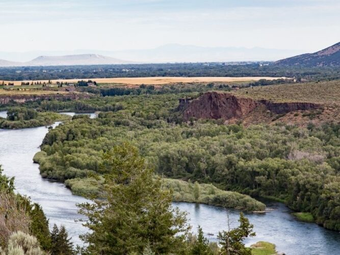 river on the border of idaho and oregon with trees and vineyards in the distance