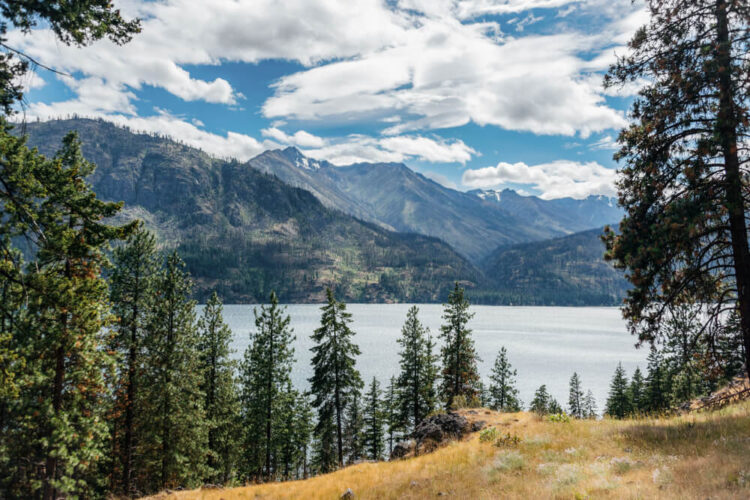 The waters of Lake Chelan surrounded by trees, on the Cascade Loop road trip in Washignton
