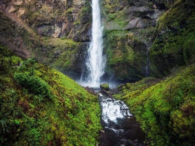 mossy waterfall near portland oregon