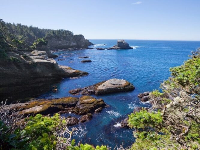 the coastal landscape of neah bay in washington state with rugged rocks, deep blue water and green flora